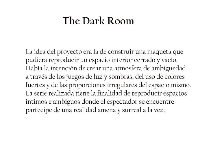 the-dark-room