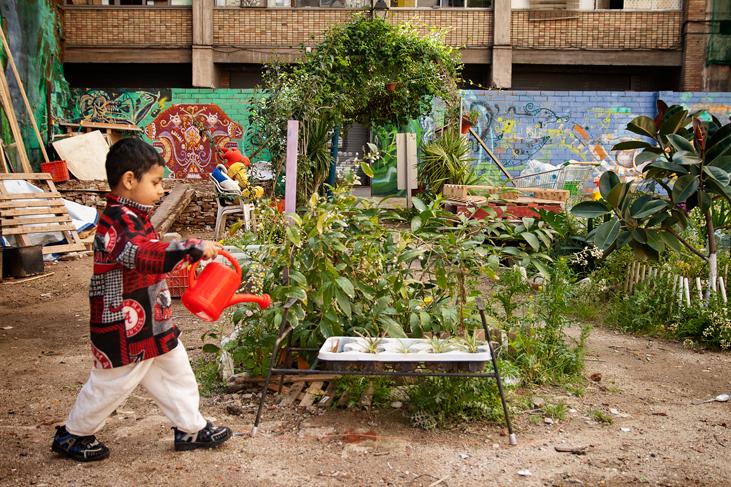 Un niño regando a las plantas, Huerto del Xino