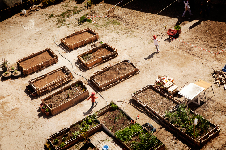 Los niños juegan entre los cultivos, Huerto del Poble Nou